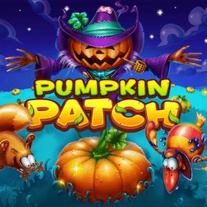 Pumpkin Patch spilavél