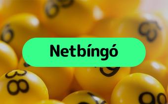 Bingo Guide